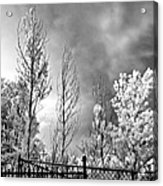 Infrared Summer Storm 2 Acrylic Print