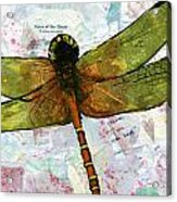 Insect Art - Voice Of The Heart Acrylic Print