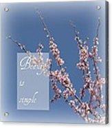 Inspirational Flowering Tree Acrylic Print