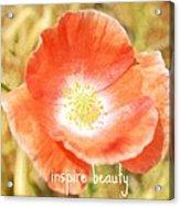 Inspire Beauty Poppy Floral Acrylic Print