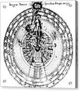 Integrae Naturae, 17th Century Acrylic Print
