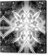 Intelligent Design Bw 2 Acrylic Print by Angelina Vick