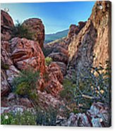 Into The Canyon Acrylic Print