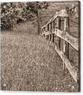 Into The Distance Bw Acrylic Print
