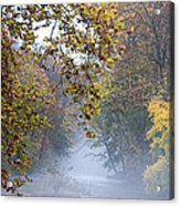 Into The Mist Acrylic Print