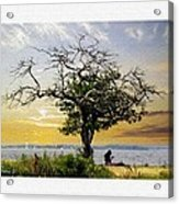 Introspective Oil Effect Acrylic Print