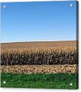 Iowa Landscape Iv Acrylic Print