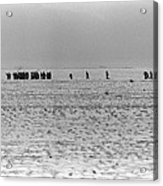Iraqi Soldiers Surrender To The 1st Acrylic Print