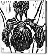 Iris Block Print Acrylic Print by Ellen Miffitt
