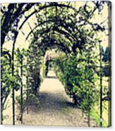 Irish Archway Acrylic Print