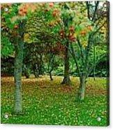 Irish Gardens Acrylic Print