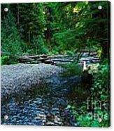 Iron Creek  Acrylic Print
