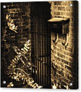 Iron Door Sepia Acrylic Print by Kelly Hazel