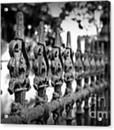 Iron Fence 2 Acrylic Print by Perry Webster