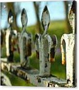 Iron Gate II Acrylic Print by Jacqui Collett