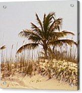 Island Sand Dune Acrylic Print