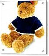 Isolated Teddy Bear Acrylic Print