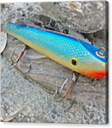 J And J Flop Tail Vintage Saltwater Fishing Lure - Blue Acrylic Print