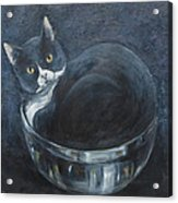 Jack-in-the-bowl Acrylic Print