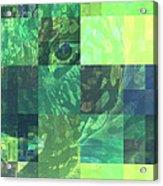 Jaguar Graph Geo Green Acrylic Print