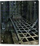 Jailbird Cage  Acrylic Print