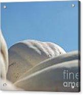 Jammer Gourd Skies 001 Acrylic Print
