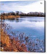 January Bass Pond 2 2012 Acrylic Print