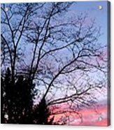 January Silhouette Acrylic Print