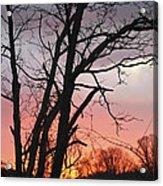 January Sunrise 3 Acrylic Print