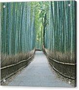 Japan Kyoto Arashiyama Sagano Bamboo Acrylic Print by Rob Tilley