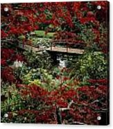 Japanese Garden, Through Acer In Acrylic Print