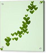 Japanese Islands Made Of Heart-shaped Leaves (ecology Image) Acrylic Print