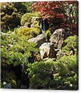 Japanese Tea Gardens San Francisco Acrylic Print