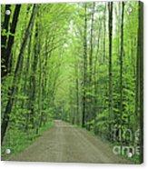 Jasper Woods Acrylic Print
