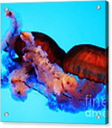 Jellyfish Drama - Digital Art Acrylic Print
