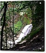 Jewell Of The Forest Acrylic Print