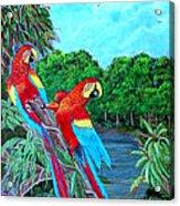 Jewels Of The Amazon Acrylic Print