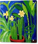 Jonquils And Bamboo Plant Acrylic Print
