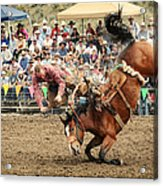 Jordan Valley Arena Action Ranch Bronc 2012 Acrylic Print