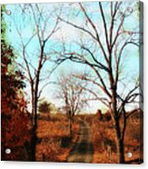 Journey To The Past Acrylic Print