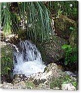 Jungle Falls II Acrylic Print