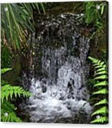 Jungle Falls IIi Acrylic Print