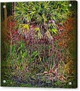 Jungle Palm Acrylic Print