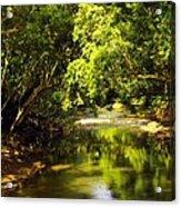 Jungle Stream Below The Secret Acrylic Print