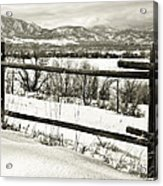 Just Beyond The Fence 1 Acrylic Print