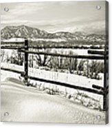 Just Beyond The Fence 2 Acrylic Print