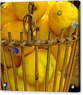 Just Lemons Acrylic Print
