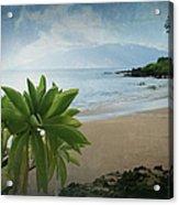 Ka Makani Olu Olu  -  Polo Beach Maui Hawaii Acrylic Print