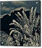 Kalalau Mountains At Night 2 Acrylic Print