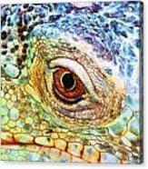 Kaleidescope Eye Acrylic Print